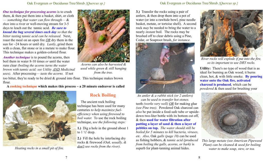 Oak ad pages 2